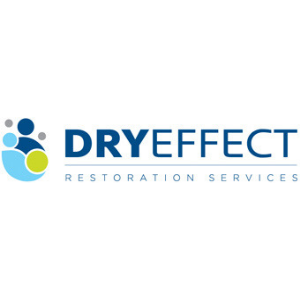Dry Effect Logo.png